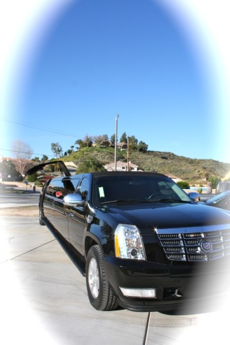 Image 9 | Phat Daddy'z limousine Service