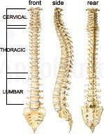 Image 4 | Advantage Care Chiropractic